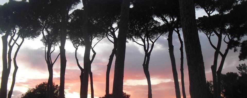 Il parco di Villa Pamphili